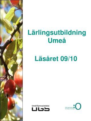 Lärlingsutbildning Umeå