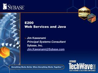 E200 Web Services and Java