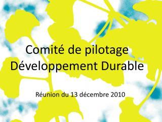 Comité de pilotage Développement Durable