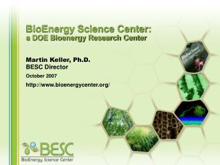 BioEnergy Science Center:  a DOE Bioenergy Research Center