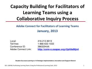 Capacity Building for Facilitators of Learning Teams using a Collaborative Inquiry Process
