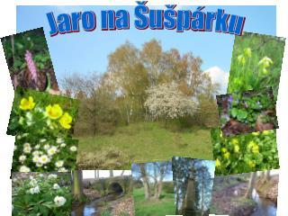 Jaro na Šušpárku