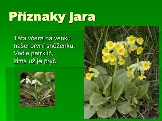 Příznaky jara