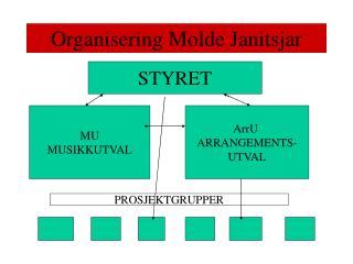 Organisering Molde Janitsjar