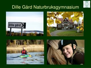 Dille Gård Naturbruksgymnasium