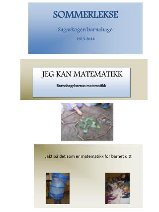 SOMMERLEKSE Sagaskogen barnehage 2013-2014