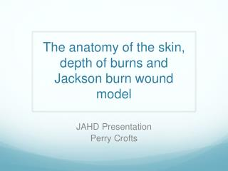The anatomy of the skin, depth of burns and Jackson burn wound model