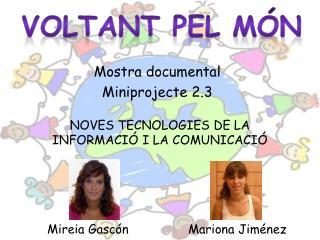 NOVES TECNOLOGIES DE LA INFORMACIÓ I LA COMUNICACIÓ