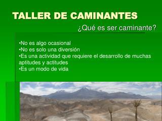 TALLER DE CAMINANTES