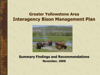 Greater Yellowstone Area Interagency Bison Management Plan