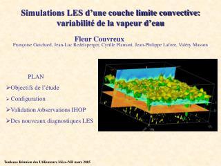Simulations LES d'une couche limite convective: variabilité de la vapeur d'eau