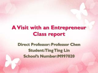 A Visit with an Entrepreneur Class report