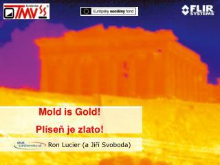 Mold is Gold! Plíseň je zlato !