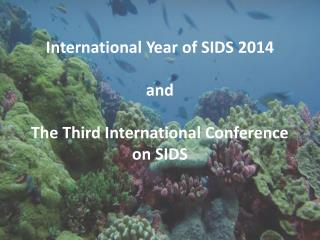 International Year of SIDS 2014 and  The Third International Conference on SIDS