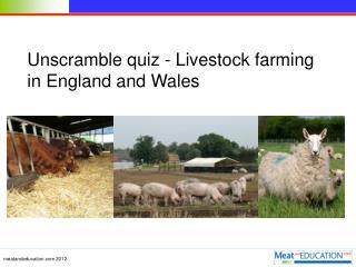 Unscramble quiz - Livestock farming in England and Wales
