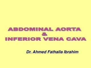 ABDOMINAL AORTA  &  INFERIOR VENA CAVA