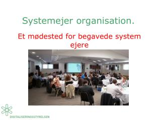 Systemejer organisation.