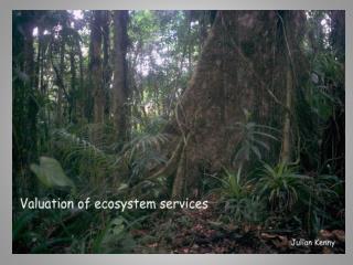 Major terrestrial ecosystems