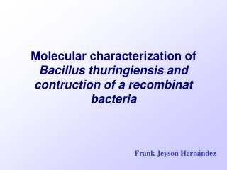 Molecular characterization of  Bacillus thuringiensis and contruction of a recombinat bacteria