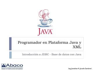Programador en Plataforma Java y XML