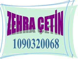 ZEHRA ÇETİN