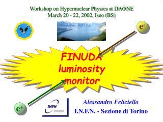 FINUDA luminosity monitor