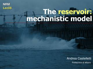 The  reservoir: mechanistic model