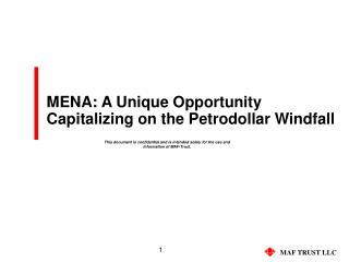 MENA: A Unique Opportunity Capitalizing on the Petrodollar Windfall