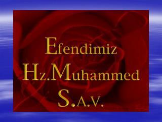 H.Z. MUHAMMED (S.A.V)