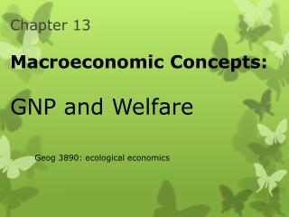 Chapter 13 Macroeconomic Concepts: GNP and Welfare