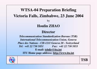 WTSA-04 Preparation Briefing Victoria Falls, Zimbabwe, 23 June 2004 by Houlin ZHAO Director