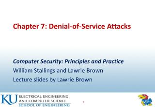 Chapter 7: Denial-of-Service Attacks