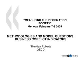 """MEASURING THE INFORMATION SOCIETY"" Geneva, February 7-9 2005"