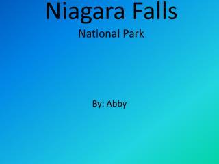 Niagara Falls  National Park