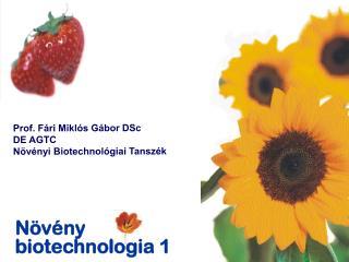 Növény biotechnologia 1