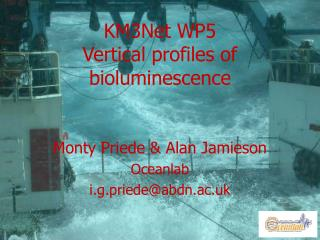 KM3Net WP5 Vertical profiles of bioluminescence