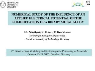 P.A. Nikrityuk, K. Eckert, R. Grundmann Institute for Aerospace Engineering,