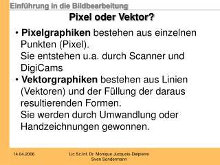 Pixel oder Vektor?