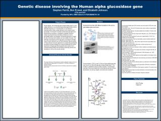 Genetic disease involving the Human alpha glucosidase gene