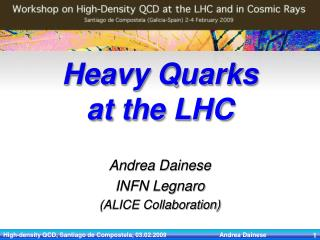 Heavy Quarks  at the LHC