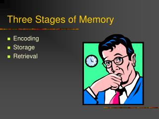 Three Stages of Memory
