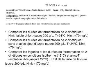 TP SOFA 1  (1 cuve)