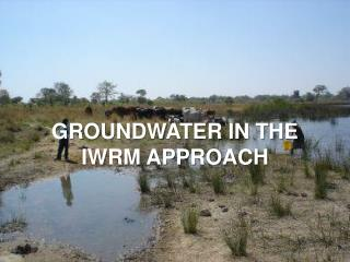 Groundwater in the IWRM approach