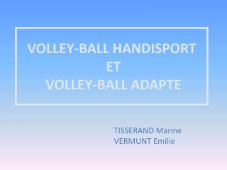 VOLLEY-BALL HANDISPORT  ET  VOLLEY-BALL ADAPTE