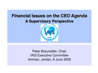 Financial Issues on the CEO Agenda A Supervisory Perspective