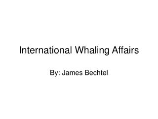 International Whaling Affairs