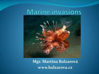 Marine invasions