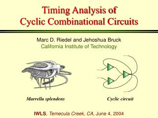Timing Analysis of   Cyclic Combinational Circuits