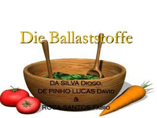 Die  Ballaststoffe DA SILVA Diogo, DE PINHO LUCAS David & ROSA SANTOS Fabio