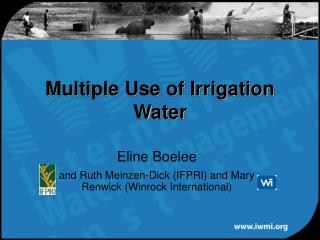 Multiple Use of Irrigation Water